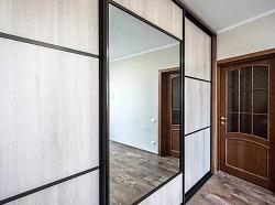 Двери-купе с зеркалом. Пример 16